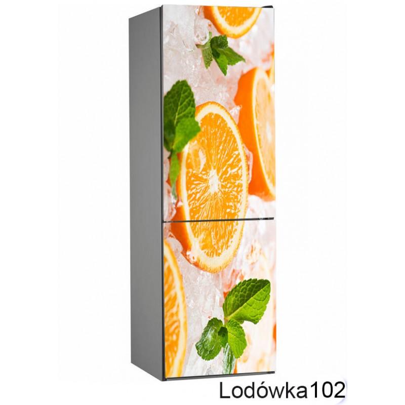 Lodówka owoce pomarańcze 102