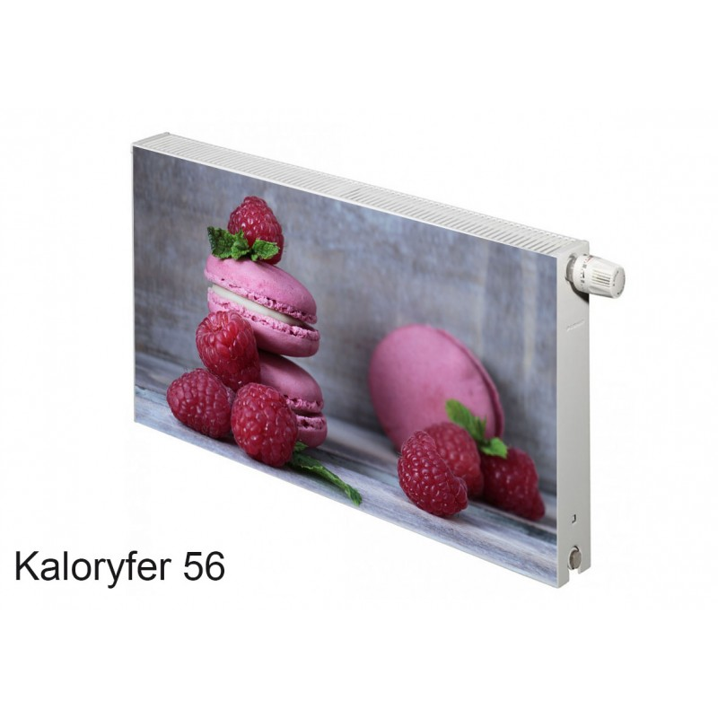 Magnes na kaloryfer owoce maliny ciasteczka 56