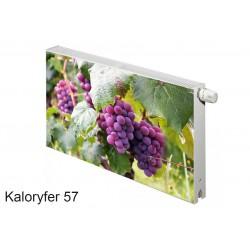 Magnes na kaloryfer owoce liście winogrono  57