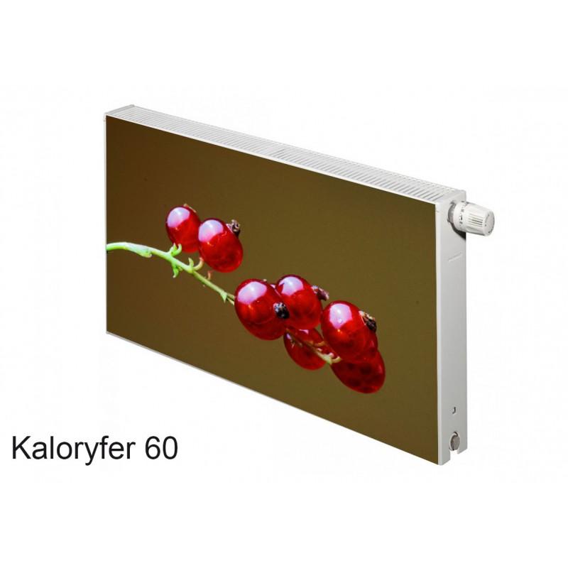 Magnes na kaloryfer owoce porzeczki 60
