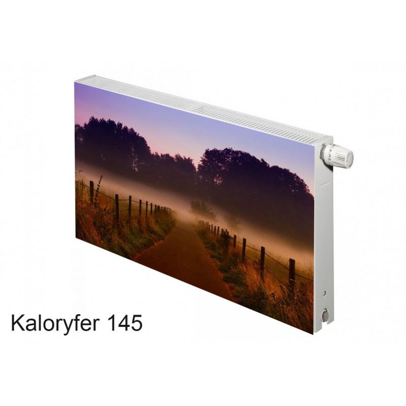 Magnes na kaloryfer las mgła 145