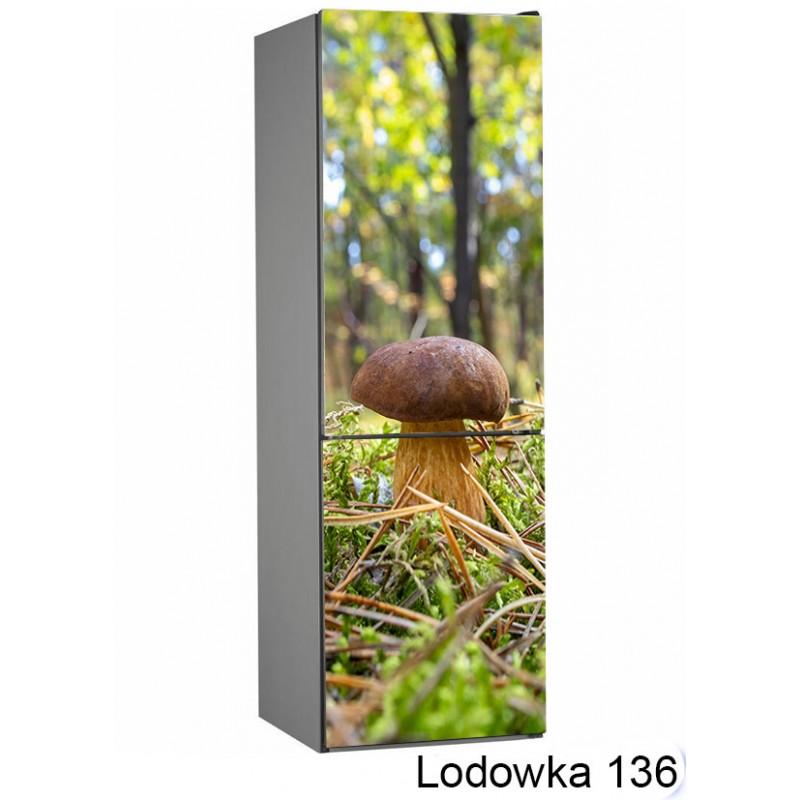 Lodówka natura las grzyby 136