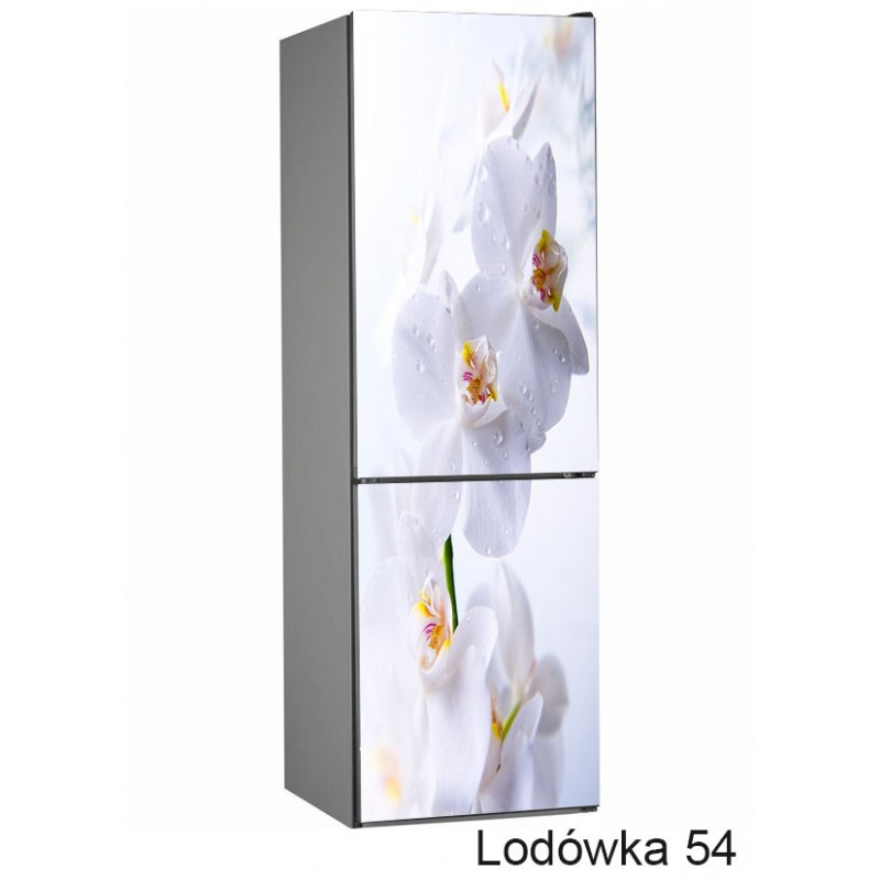 Lodówka kwiaty storczyk  54